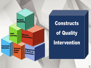 Webinar Series: Constructs of Quality Intervention
